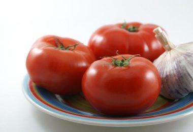 אלרגיה לעגבניות