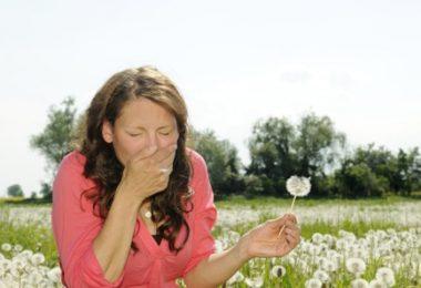 אלרגיה לאבקת פרחים